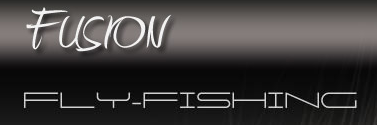 fusion fly fishing